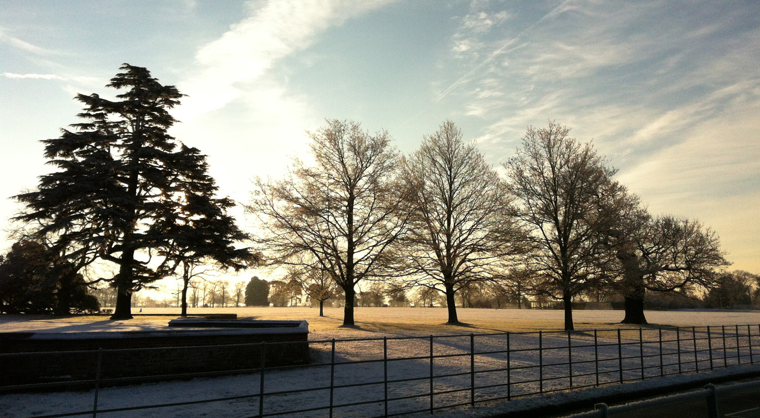 Winter morning at Wivenhoe Park